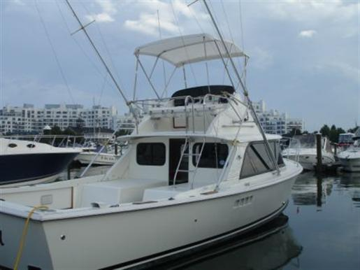 1975 Bertram 31 FLYBRIDGE