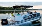 lowe pontoon x 230 running