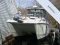 2001World Cat266 SC