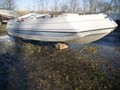 1987 Chris Craft 200LS Used Boat For Sale