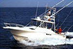 LUHRS Tournament 290 Open Boat for Sale