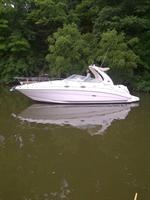 Searay 280 Sundancer Boat for Sale