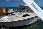 Grady-White 300 Marlin Boat for Sale