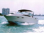 Sea Ray 300 Boat for Sale