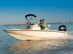 Boston Whaler 200 Dauntless 2013