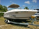 Sea Ray 225 Weekender Boat for Sale