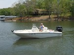 Boston Whaler 18 Dauntless 2010
