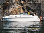 Sea Ray 260 Sundancer 2002