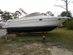 Sea Ray 290 Amberjack Boat for Sale