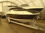 Searay 240 Sundeck Boat for Sale