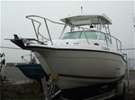 Striper Seaswirl LE Boat for Sale