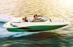 Sea Ray 190 Sport 2014