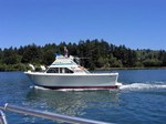 Tollycraft Sportfisher 28 Boat for Sale