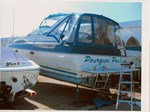 Bayliner 3255 AVANTI SUNBRIDGE 1989