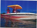 Chris-Craft FISH 'N SKI 1986
