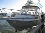 Boston Whaler 1989