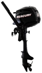 Mercury 2.5M 4S 2019