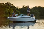 Sea Ray 19 SPX Outboard 2015