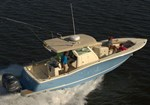 Scout Boats 320 LXF 2015