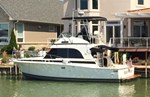Bertram FLYBRIDGE 1989