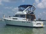 BAYLINER 3870 Motoryacht 1986
