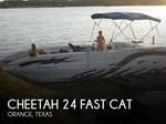 Cheetah 2007