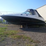 Sea Ray Sundancer 2006