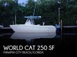 World Cat 2003