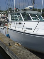 baha cruisers 286 2006