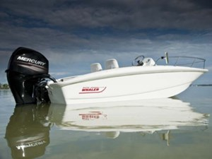 2017 Boston Whaler 150 Super Sport Photo 1