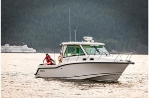 2017 Boston Whaler 315 Conquest Pilothouse Photo 1