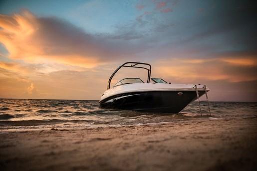 2016 Sea Ray 240 Sundeck Photo 6 of 30