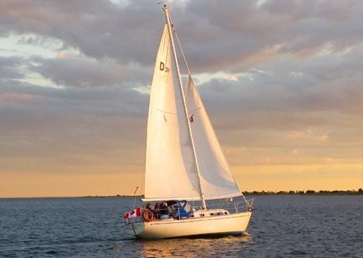 1982 Douglas 31 Sloop Photo 3 of 3