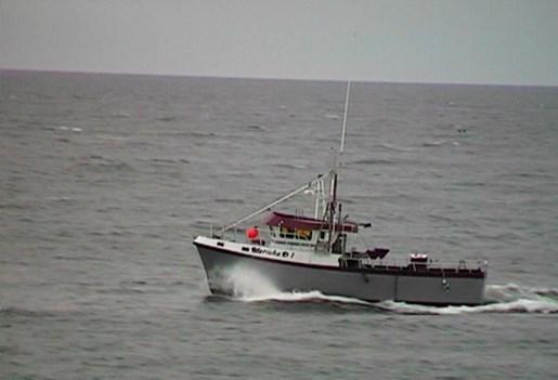 bateau de peche a vendre gaspesie