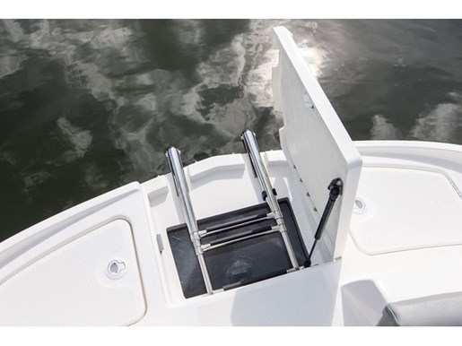 2018 Bayliner 195 Photo 13 of 15