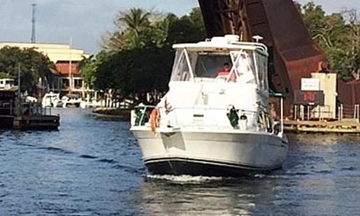 1995 Mainship boat for sale, model of the boat is 40 Sedan Bridge & Image # 2 of 27