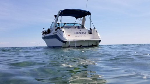 1990 Sea Ray boat for sale, model of the boat is 270 Sundancer MC & Image # 2 of 13