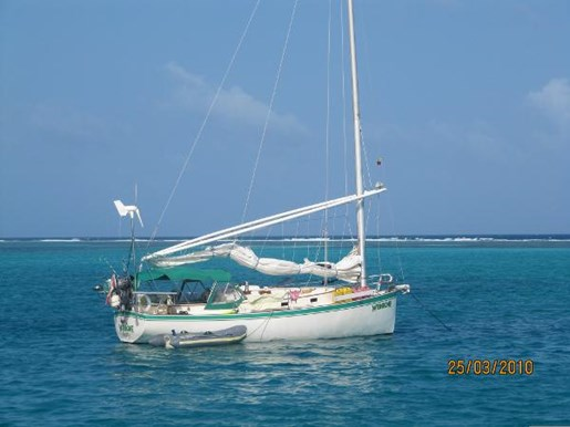 1980 NONSUCH CLASSIC 30 for sale
