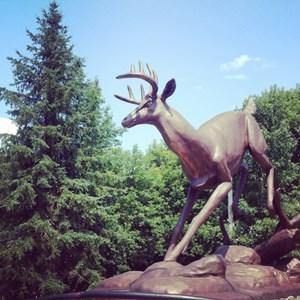 Buckhorn Sculpture
