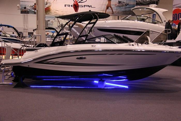 Sea Ray 21 SPX 1