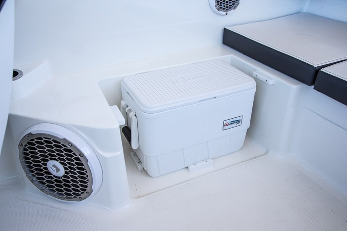Sea Ray 21 SPX cooler