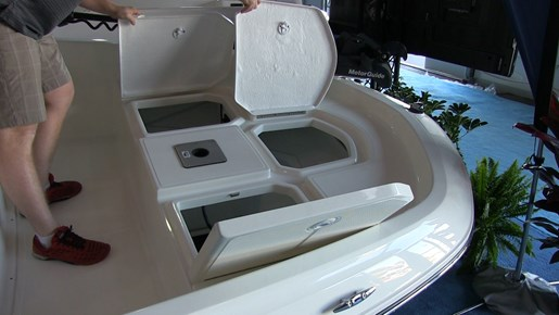 bayliner element f16 storage