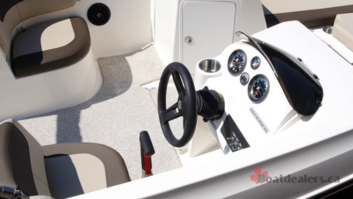 Bayliner Element E21 Helm