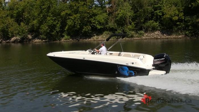 2017 Bayliner Element E21 Bowrider Boat Review - BoatDealers ca