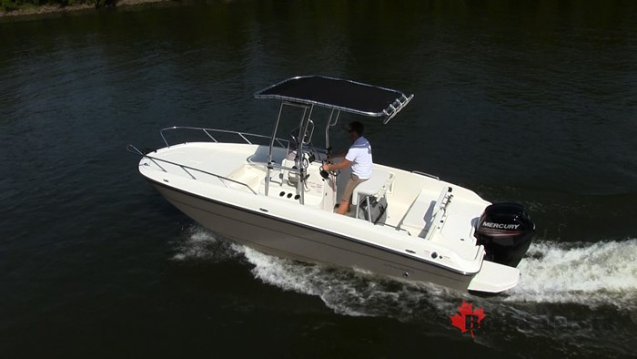 Bayliner Element F21 Overhead
