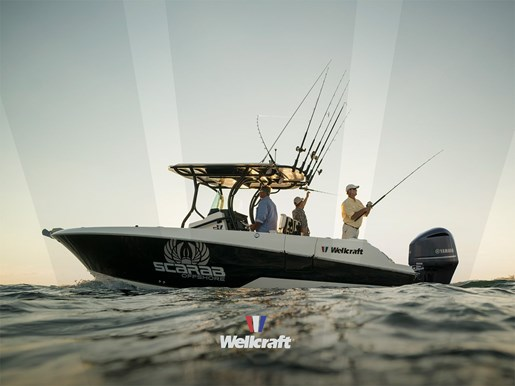 wellcraft 262 fisherman main