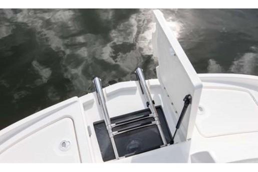 bayliner 190 deck boat ladder