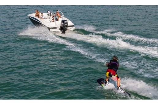 bayliner element wakeboard