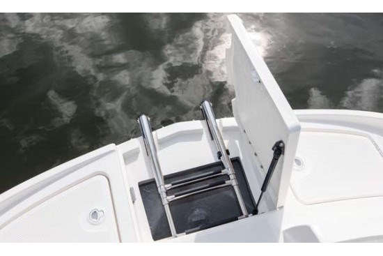 bayliner 190 deck boat ladder