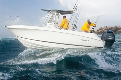 Wellcraft 252 fisherman fishing